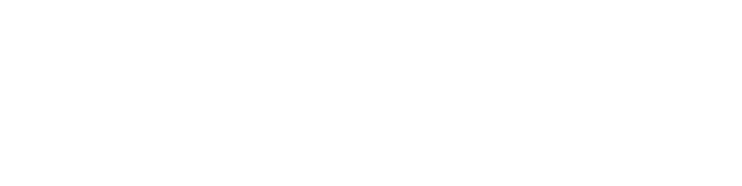 DAYS HOURS MINS SECS